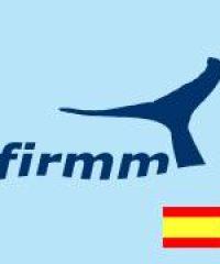 Firmm