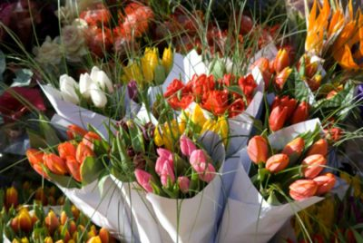 Mariflor Florist
