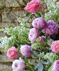 Paqui Florist