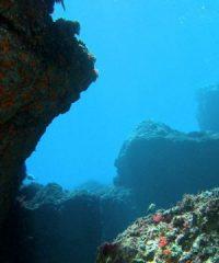Scorpora Diving