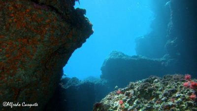 Buceo Scorpora
